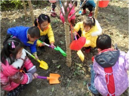 植树节:春意暖暖,绿